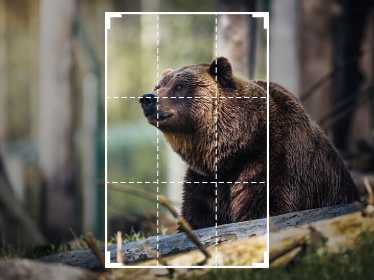 Features featurecard Crop a ru